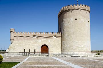 Castle of Arevalo in Avila