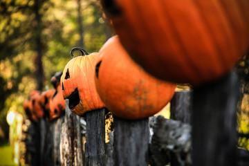 Jack O Lanterns Fence