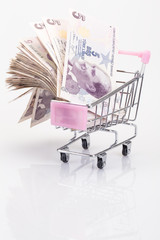 turkish liras in trolley on white