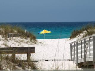 Beach Grass-14