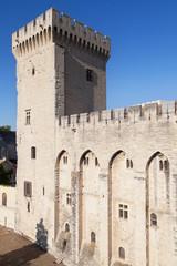 Tour de la Campane, Palais des Papes