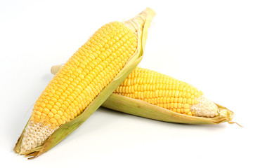 Fresh raw corn