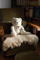 teddy bear on armchair
