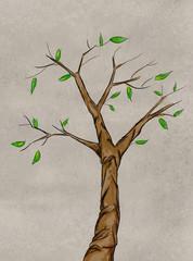 Stem decoration sketch tree watercolor