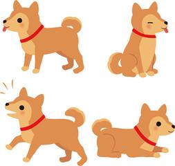 中型犬の4つのポーズ