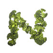 Broccoli letter N on white background