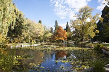 The Queenstown Gardens