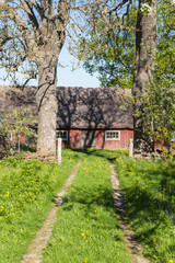 Garden grass road