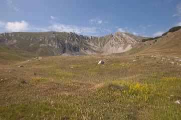 French Alp - Monges Massif