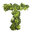 Broccoli letter T on white background