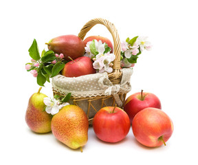 pears and apples in a basket on a white background