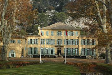 Platane, Beaurecueil, 13,Bouches-du-Rhône,