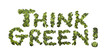 """Think Green"" written with broccoli"