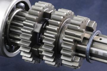 Zahnräder eines Getriebes