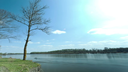 Blue sky, river and trees. Landscape. time lapse without birds
