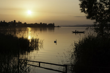 lake, boat and swan in sunset