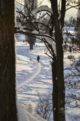 Man walks through the snowed  park