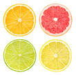 canvas print picture - Slices of citrus fruits isolated on white