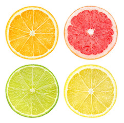 Slices of citrus fruits isolated on white