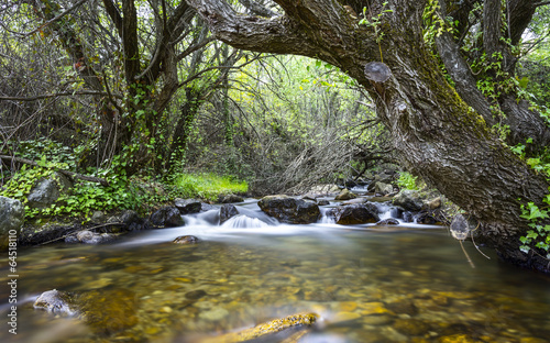 Fotobehang Madrid River landscape