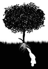 essere umano cresce sotto terra nutrito da un albero