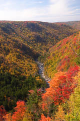 Fall Mountain Scenic