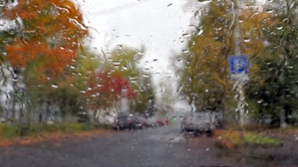 Car traffic in rainy autumn weather