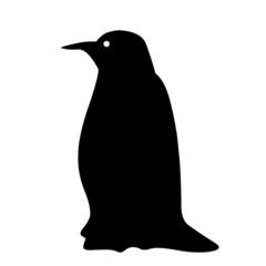 stickers pingouin transparent, arrière de voiture
