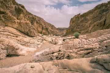 Ein Saharonim trail