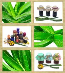 Aloe vera set with medical bottles