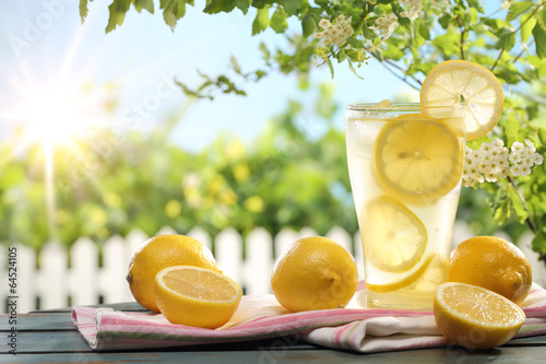 Fototapeta Citrus lemonade in garden setting.
