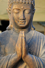 A Golden Buddha Statue Praying