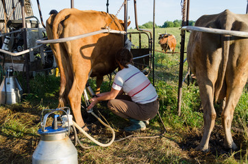 farmer using new technologies in milking cows