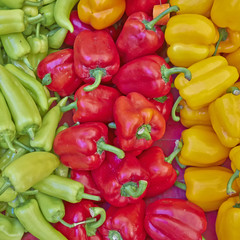 colorful bell peppers for sale, natural background