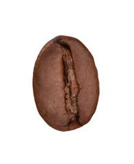 Semilla,grano de café aislado en fondo blanco.