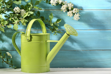 Outdoor gardening tool and flowers