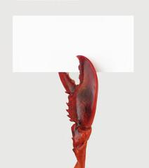 Pata de langosta,concepto comida de mariscos.