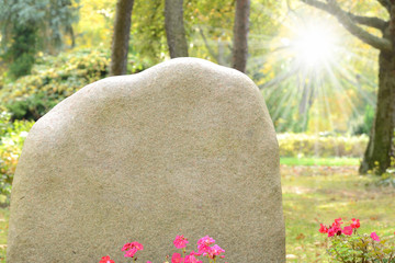Friedhof 41