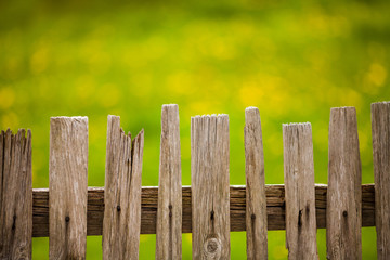 Old wood fence in garden .