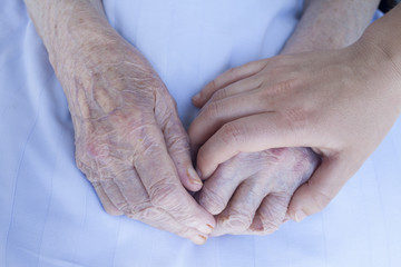 Elderly and young woman hands