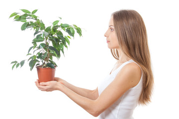 young woman holding houseplant, isolaterd on white