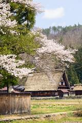 Shirakawago landscape