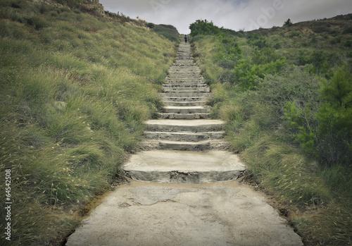 steps - 64542508