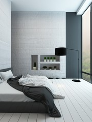 Contemporary bedroom with alcove