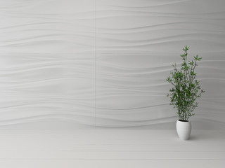 Empty white room interior with houseplant