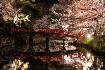 弘前公園の夜桜と橋