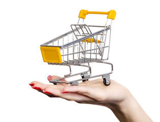 Shopping cart on a female hand
