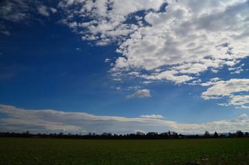 gruenes feld und weisse wolken