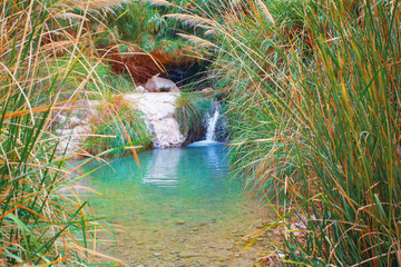 Small waterfall at Ein Gedi Nature Reserve in Israel