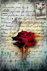 Old letter with red rose, and postage stamp